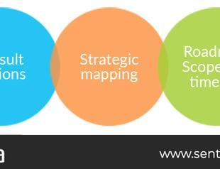 Thumb developing roadmap